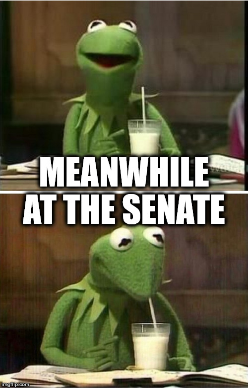 Kermit Drinking Milk |  MEANWHILE AT THE SENATE | image tagged in kermit drinking milk,memes,senate,got milk,trump impeachment,but thats none of my business | made w/ Imgflip meme maker
