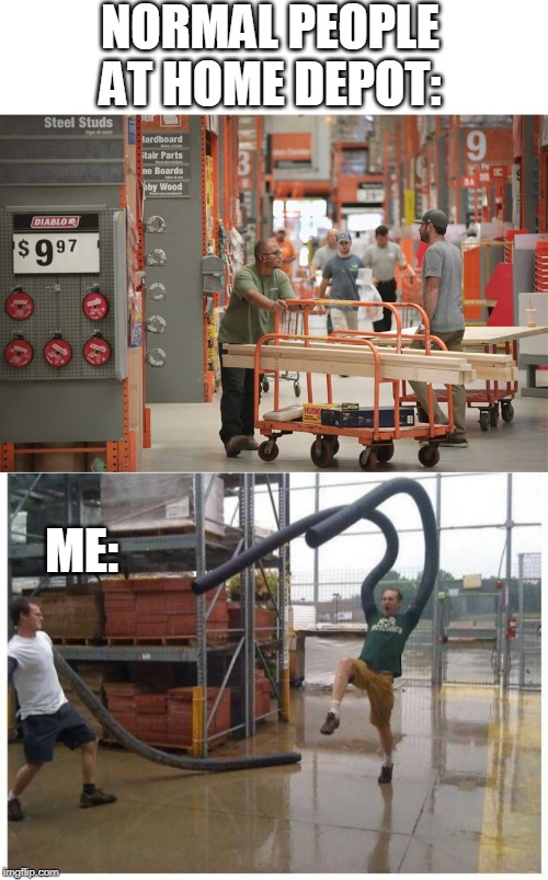 WACKY WAVING INFLATABLE ARM FLAILING TUBE MAN! |  NORMAL PEOPLE AT HOME DEPOT:; ME: | image tagged in memes,funny memes,home depot,idiots | made w/ Imgflip meme maker
