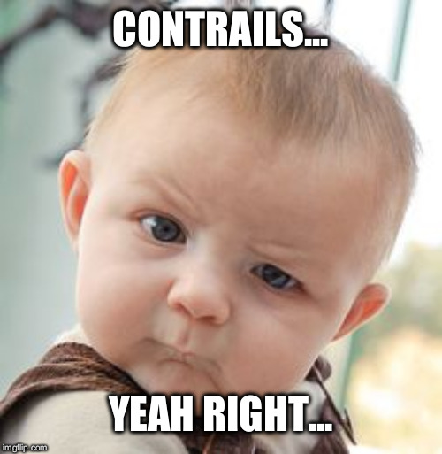 Skeptical Baby | CONTRAILS... YEAH RIGHT... | image tagged in memes,skeptical baby | made w/ Imgflip meme maker