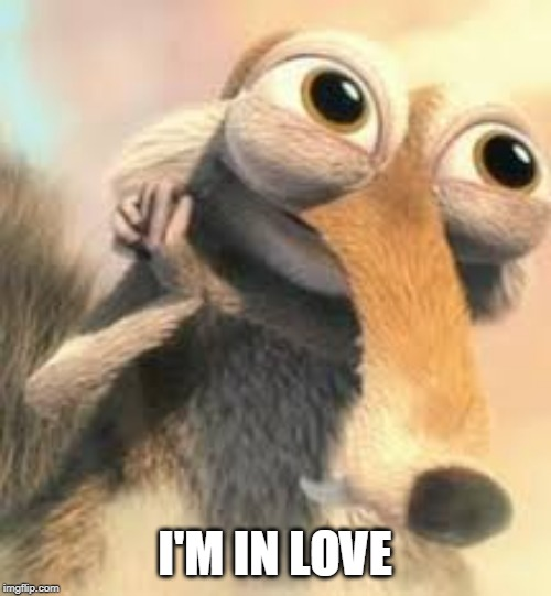 Ice age squirrel in love | I'M IN LOVE | image tagged in ice age squirrel in love | made w/ Imgflip meme maker