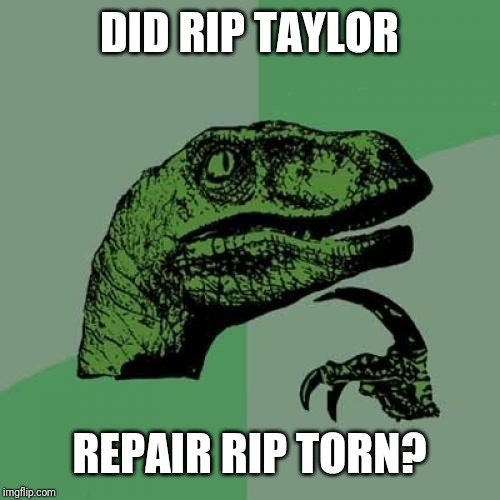 Philosoraptor |  DID RIP TAYLOR; REPAIR RIP TORN? | image tagged in philosoraptor,actors,actor,question,questions | made w/ Imgflip meme maker