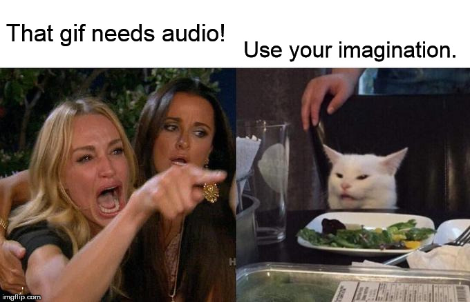 Woman Yelling At Cat Meme | That gif needs audio! Use your imagination. | image tagged in memes,woman yelling at cat | made w/ Imgflip meme maker