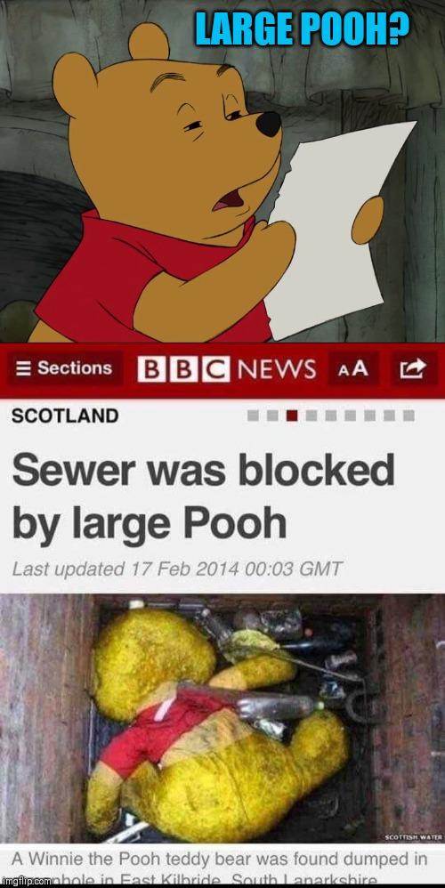 Poo |  LARGE POOH? | image tagged in winnie the pooh,memes,44colt,sewer,news,stories | made w/ Imgflip meme maker