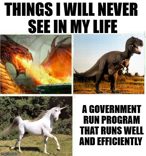 They just don't exist |  THINGS I WILL NEVER  SEE IN MY LIFE; A GOVERNMENT RUN PROGRAM THAT RUNS WELL AND EFFICIENTLY | image tagged in when you see it,government,political meme | made w/ Imgflip meme maker