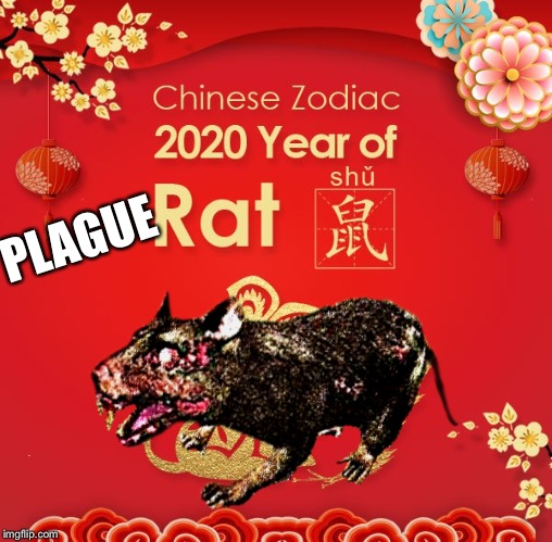 Right??? |  PLAGUE | image tagged in kung flu,wuhan,coronavirus,chinese new year,plague,rat | made w/ Imgflip meme maker