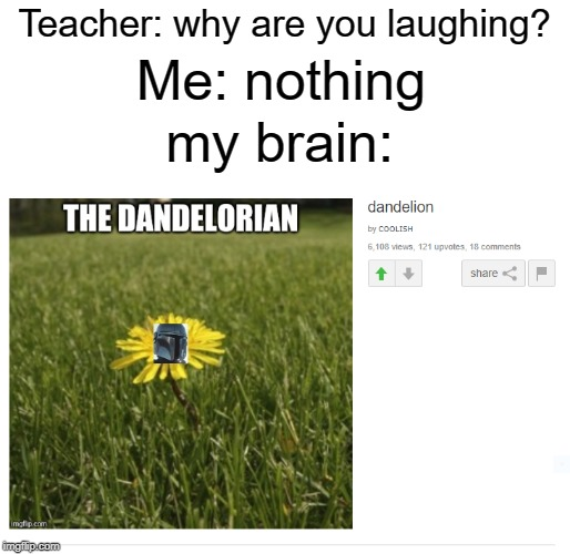 Credit goes to COOLISH |  Teacher: why are you laughing? Me: nothing; my brain: | image tagged in cool,funny,memes,upvotes,mandalorian,dandelion | made w/ Imgflip meme maker