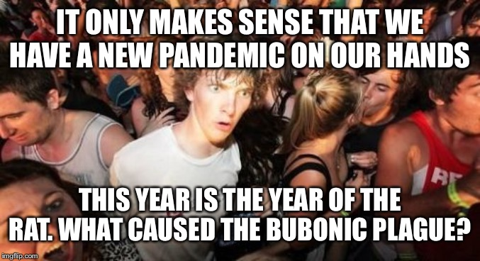 Rats! | IT ONLY MAKES SENSE THAT WE HAVE A NEW PANDEMIC ON OUR HANDS THIS YEAR IS THE YEAR OF THE RAT. WHAT CAUSED THE BUBONIC PLAGUE? | image tagged in memes,sudden clarity clarence | made w/ Imgflip meme maker
