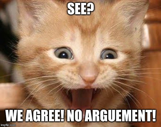SEE? WE AGREE! NO ARGUMENT! | image tagged in memes,excited cat | made w/ Imgflip meme maker