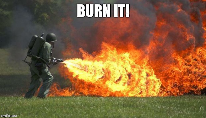 flamethrower | BURN IT! | image tagged in flamethrower | made w/ Imgflip meme maker