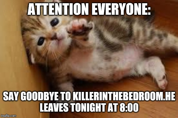 Sad Kitten Goodbye |  ATTENTION EVERYONE:; SAY GOODBYE TO KILLERINTHEBEDROOM.HE LEAVES TONIGHT AT 8:00 | image tagged in sad kitten goodbye | made w/ Imgflip meme maker