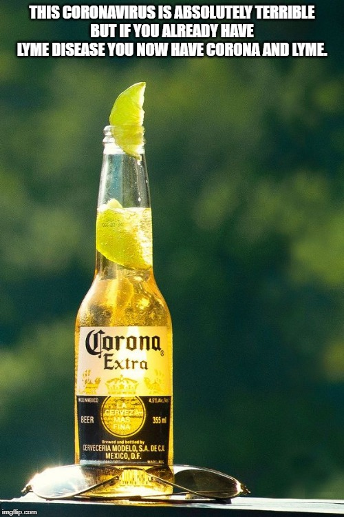 corona and lyme |  THIS CORONAVIRUS IS ABSOLUTELY TERRIBLE BUT IF YOU ALREADY HAVE LYME DISEASE YOU NOW HAVE CORONA AND LYME. | image tagged in corona,lyme,bad puns | made w/ Imgflip meme maker
