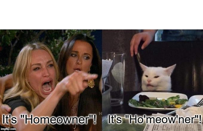 "Woman Yelling At Cat | It's ""Homeowner""! It's ""Ho'meow'ner""! 
