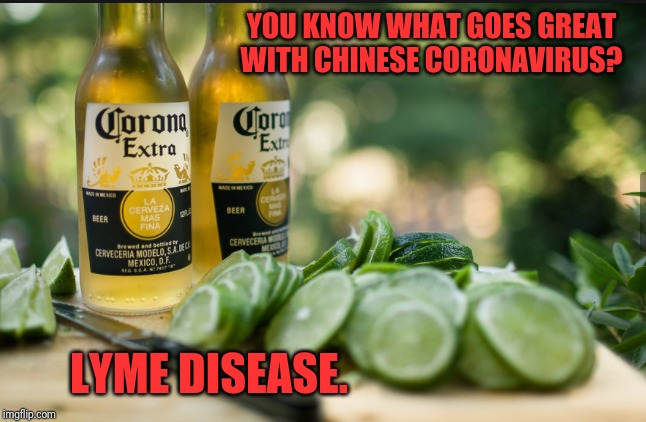 YOU KNOW WHAT GOES GREAT WITH CHINESE CORONAVIRUS? LYME DISEASE. | image tagged in lime and corona virus | made w/ Imgflip meme maker
