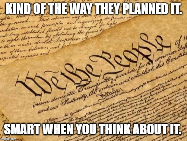 Constitution | KIND OF THE WAY THEY PLANNED IT. SMART WHEN YOU THINK ABOUT IT. | image tagged in constitution | made w/ Imgflip meme maker