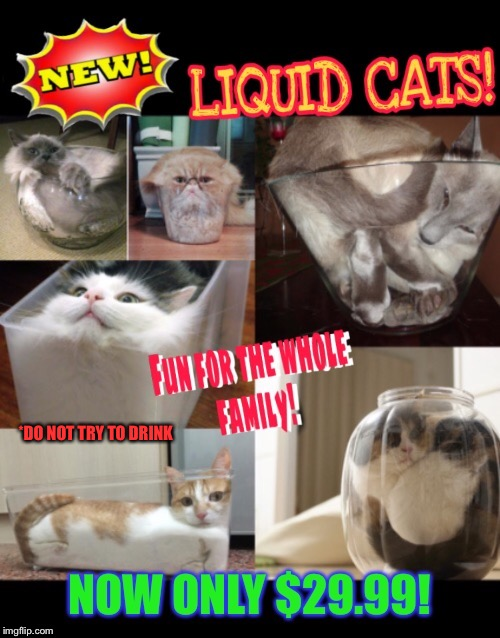 Liquid cats | *DO NOT TRY TO DRINK | image tagged in funny cats,funny picture,funny memes,flexible,cats | made w/ Imgflip meme maker