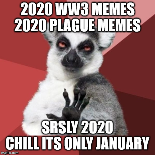 Chill Out Lemur | 2020 WW3 MEMES 2020 PLAGUE MEMES SRSLY 2020 CHILL ITS ONLY JANUARY | image tagged in memes,chill out lemur | made w/ Imgflip meme maker