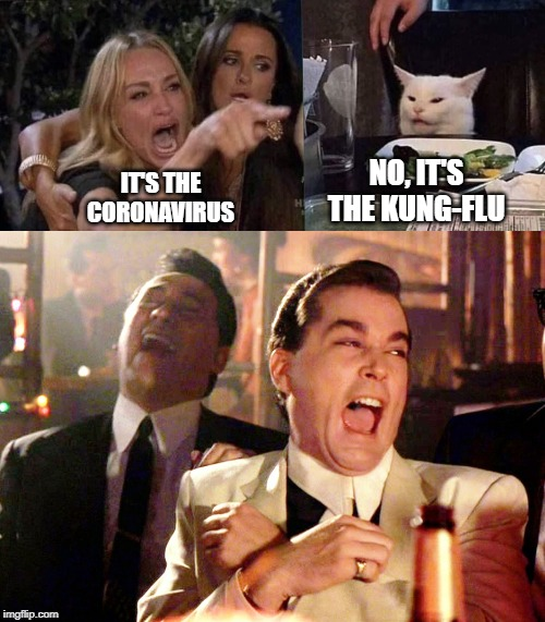 Smudge takes on the Coronavirus | IT'S THE CORONAVIRUS NO, IT'S THE KUNG-FLU | image tagged in memes,good fellas hilarious,woman yelling at cat | made w/ Imgflip meme maker