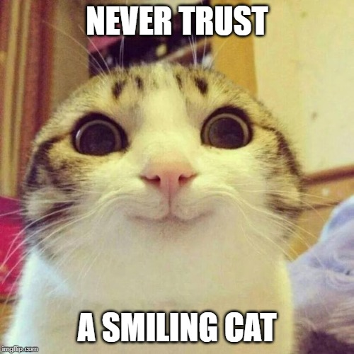 Smiling Cat | NEVER TRUST A SMILING CAT | image tagged in memes,smiling cat | made w/ Imgflip meme maker