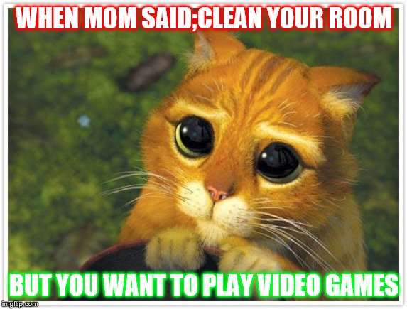 Shrek Cat | WHEN MOM SAID;CLEAN YOUR ROOM BUT YOU WANT TO PLAY VIDEO GAMES | image tagged in memes,shrek cat | made w/ Imgflip meme maker