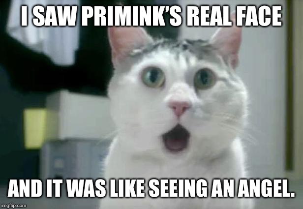 OMG Cat | I SAW PRIMINK'S REAL FACE AND IT WAS LIKE SEEING AN ANGEL. | image tagged in memes,omg cat | made w/ Imgflip meme maker