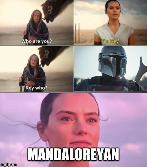 Rey who? Mando | image tagged in rey,mando,rey who | made w/ Imgflip meme maker