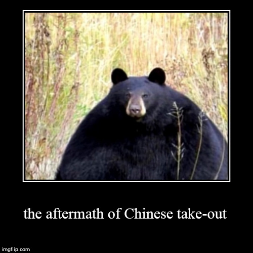 inspired by a true story | the aftermath of Chinese take-out | image tagged in funny,demotivationals,fat,fat bear,phat,chinese food | made w/ Imgflip demotivational maker