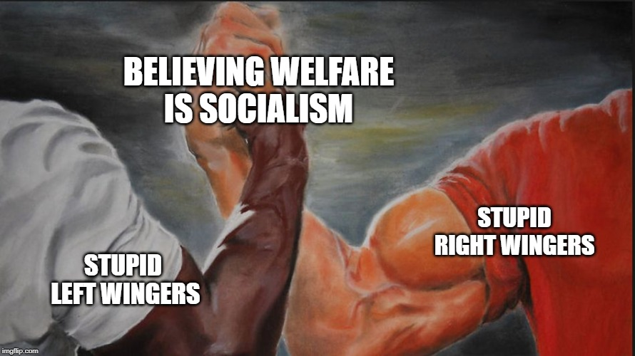 Black White Arms | STUPID RIGHT WINGERS STUPID  LEFT WINGERS BELIEVING WELFARE IS SOCIALISM | image tagged in black white arms,AdviceAnimals | made w/ Imgflip meme maker
