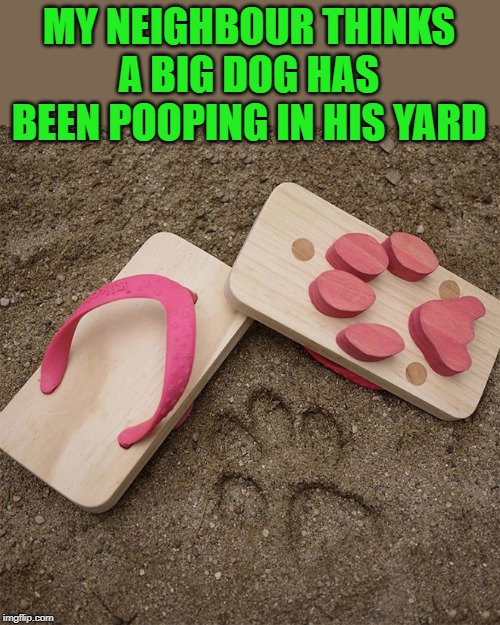 like a big dog | MY NEIGHBOUR THINKS A BIG DOG HAS BEEN POOPING IN HIS YARD | image tagged in flip flops,dog tracks | made w/ Imgflip meme maker