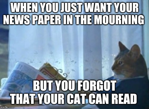I Should Buy A Boat Cat | WHEN YOU JUST WANT YOUR NEWS PAPER IN THE MOURNING BUT YOU FORGOT THAT YOUR CAT CAN READ | image tagged in memes,i should buy a boat cat | made w/ Imgflip meme maker