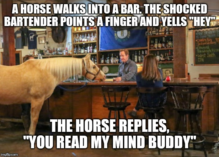 image tagged in horse,bar jokes | made w/ Imgflip meme maker