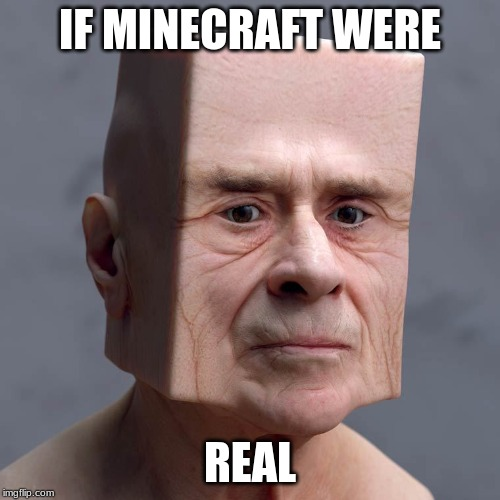 IF MINECRAFT WERE REAL | image tagged in square head | made w/ Imgflip meme maker