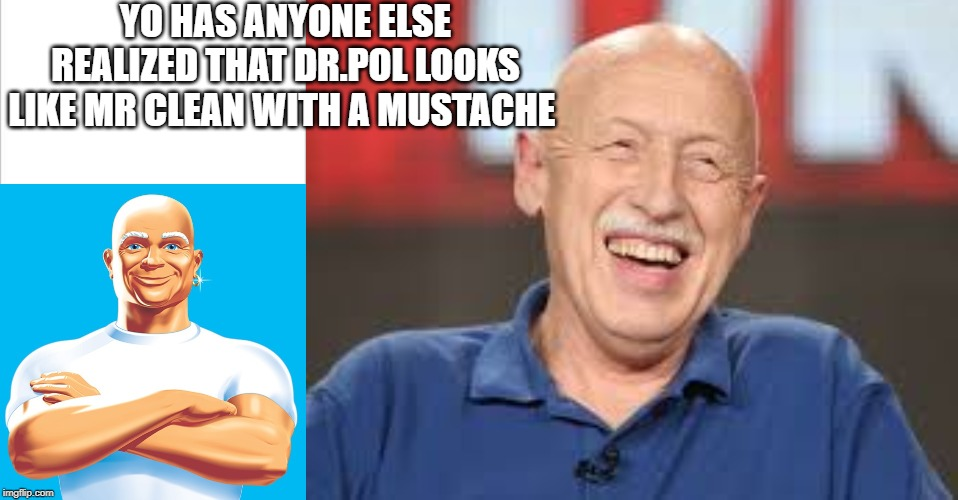 YO HAS ANYONE ELSE REALIZED THAT DR.POL LOOKS LIKE MR CLEAN WITH A MUSTACHE | image tagged in white background | made w/ Imgflip meme maker