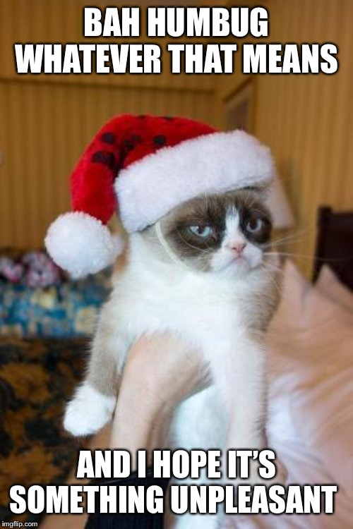Grumpy Cat Christmas | BAH HUMBUG WHATEVER THAT MEANS AND I HOPE IT'S SOMETHING UNPLEASANT | image tagged in memes,grumpy cat christmas,grumpy cat | made w/ Imgflip meme maker