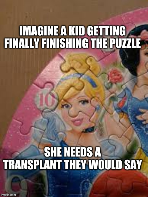 puzzle disorder |  IMAGINE A KID GETTING FINALLY FINISHING THE PUZZLE; SHE NEEDS A TRANSPLANT THEY WOULD SAY | image tagged in nose,cinderella | made w/ Imgflip meme maker
