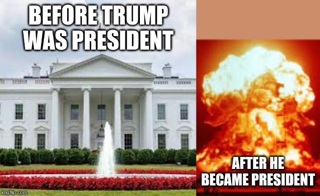 BEFORE TRUMP WAS PRESIDENT; AFTER HE BECAME PRESIDENT | image tagged in trump,donald trump is an idiot | made w/ Imgflip meme maker