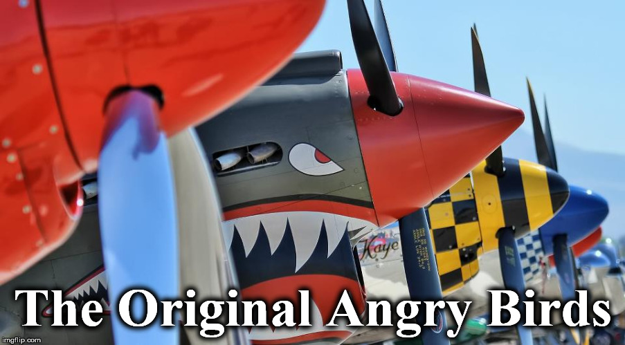 The Original Angry Birds | image tagged in angry | made w/ Imgflip meme maker