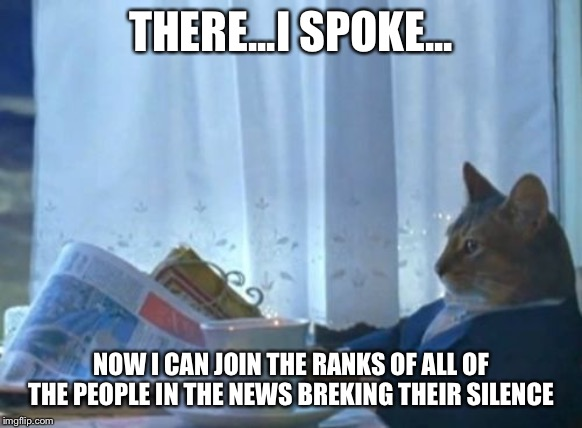 Todays news: Cat breaks silence | THERE...I SPOKE... NOW I CAN JOIN THE RANKS OF ALL OF THE PEOPLE IN THE NEWS BREAKING THEIR SILENCE | image tagged in memes,i should buy a boat cat | made w/ Imgflip meme maker