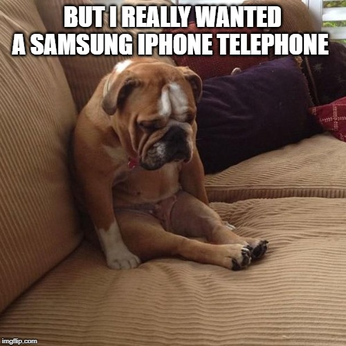 bulldogsad | BUT I REALLY WANTED A SAMSUNG IPHONE TELEPHONE | image tagged in bulldogsad | made w/ Imgflip meme maker