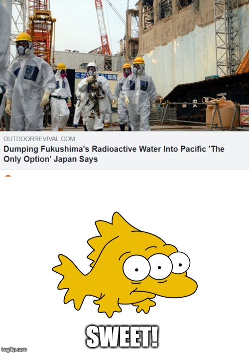 What Could Go Wrong? |  SWEET! | image tagged in memes,japan,radioactive waste,the simpsons | made w/ Imgflip meme maker