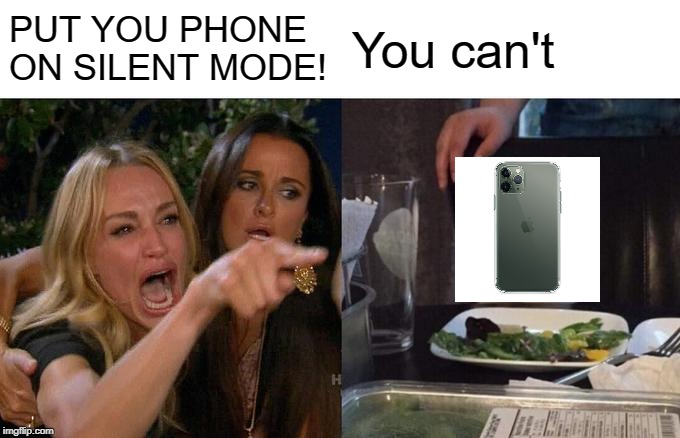 Woman Yelling At Cat Meme | PUT YOU PHONE ON SILENT MODE! You can't | image tagged in memes,woman yelling at cat | made w/ Imgflip meme maker