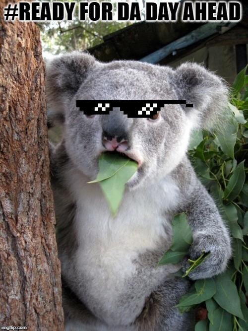 Surprised Koala |  #READY FOR DA DAY AHEAD | image tagged in memes,surprised koala | made w/ Imgflip meme maker