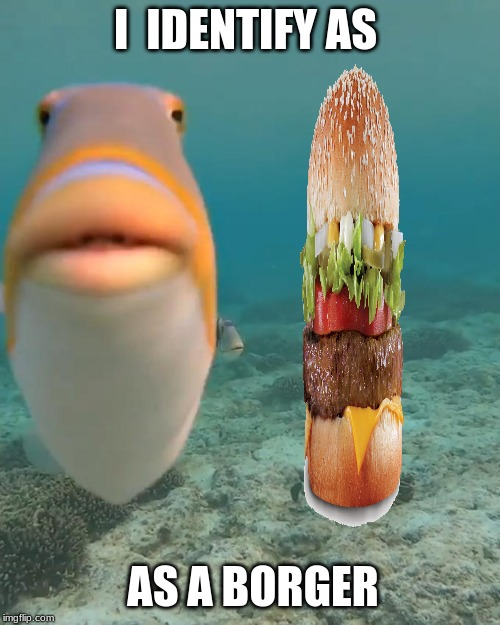 bruh |  I  IDENTIFY AS; AS A BORGER | image tagged in staring fish,funny,weird,fish,burger,hamburger | made w/ Imgflip meme maker