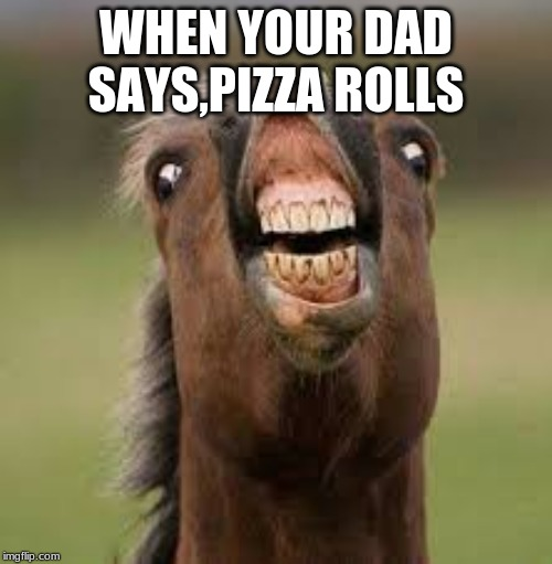 WHEN YOUR DAD SAYS,PIZZA ROLLS | image tagged in weird horse thing | made w/ Imgflip meme maker