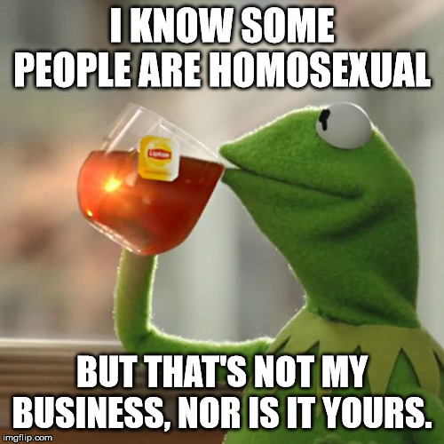 But That's None Of My Business |  I KNOW SOME PEOPLE ARE HOMOSEXUAL; BUT THAT'S NOT MY BUSINESS, NOR IS IT YOURS. | image tagged in memes,but thats none of my business,kermit the frog | made w/ Imgflip meme maker