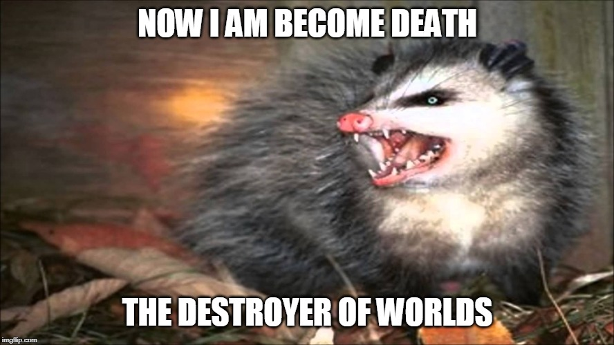 NOW I AM BECOME DEATH; THE DESTROYER OF WORLDS | image tagged in opossum | made w/ Imgflip meme maker