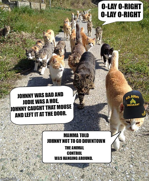 Puss-n-boot camp | MAMMA TOLD JOHNNY NOT TO GO DOWNTOWN THE ANIMAL CONTROL WAS HANGING AROUND. JOHNNY WAS BAD AND JODIE WAS A HOE, JOHNNY CAUGHT THAT MOUSE AND | image tagged in boot camp,cats,by kewlew | made w/ Imgflip meme maker