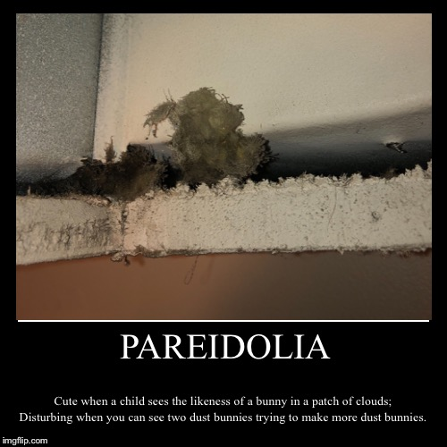 PAREIDOLIA | Cute when a child sees the likeness of a bunny in a patch of clouds; Disturbing when you can see two dust bunnies trying to mak | image tagged in funny,demotivationals | made w/ Imgflip demotivational maker