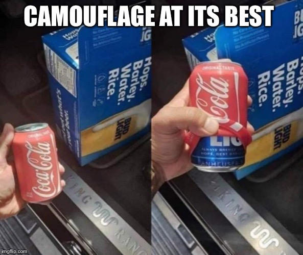 Camo | CAMOUFLAGE AT ITS BEST | image tagged in camouflage | made w/ Imgflip meme maker