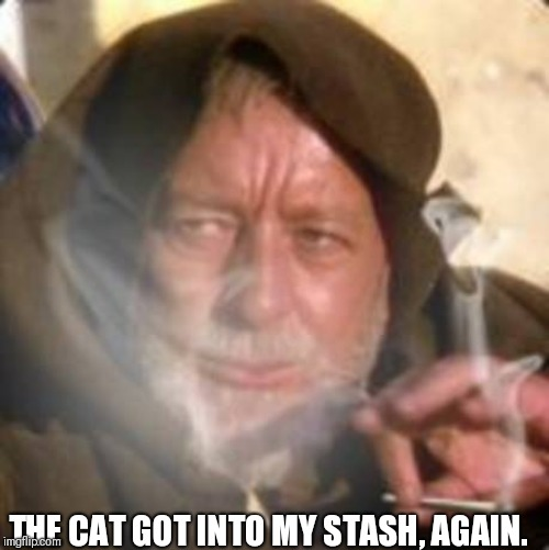 obiwan star wars joint smoking weed | THE CAT GOT INTO MY STASH, AGAIN. | image tagged in obiwan star wars joint smoking weed | made w/ Imgflip meme maker