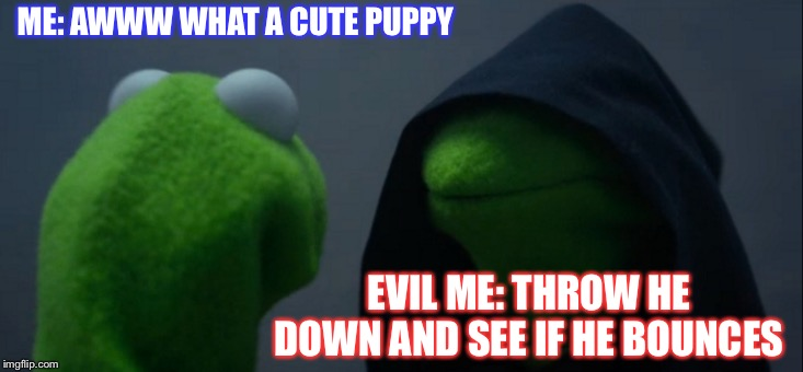 Evil Kermit | ME: AWWW WHAT A CUTE PUPPY EVIL ME: THROW HE DOWN AND SEE IF HE BOUNCES | image tagged in memes,evil kermit | made w/ Imgflip meme maker